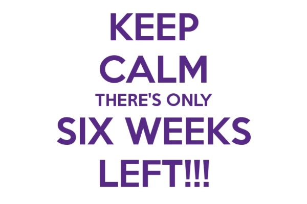 You've Got 6 Weeks. What's Your Game Plan?